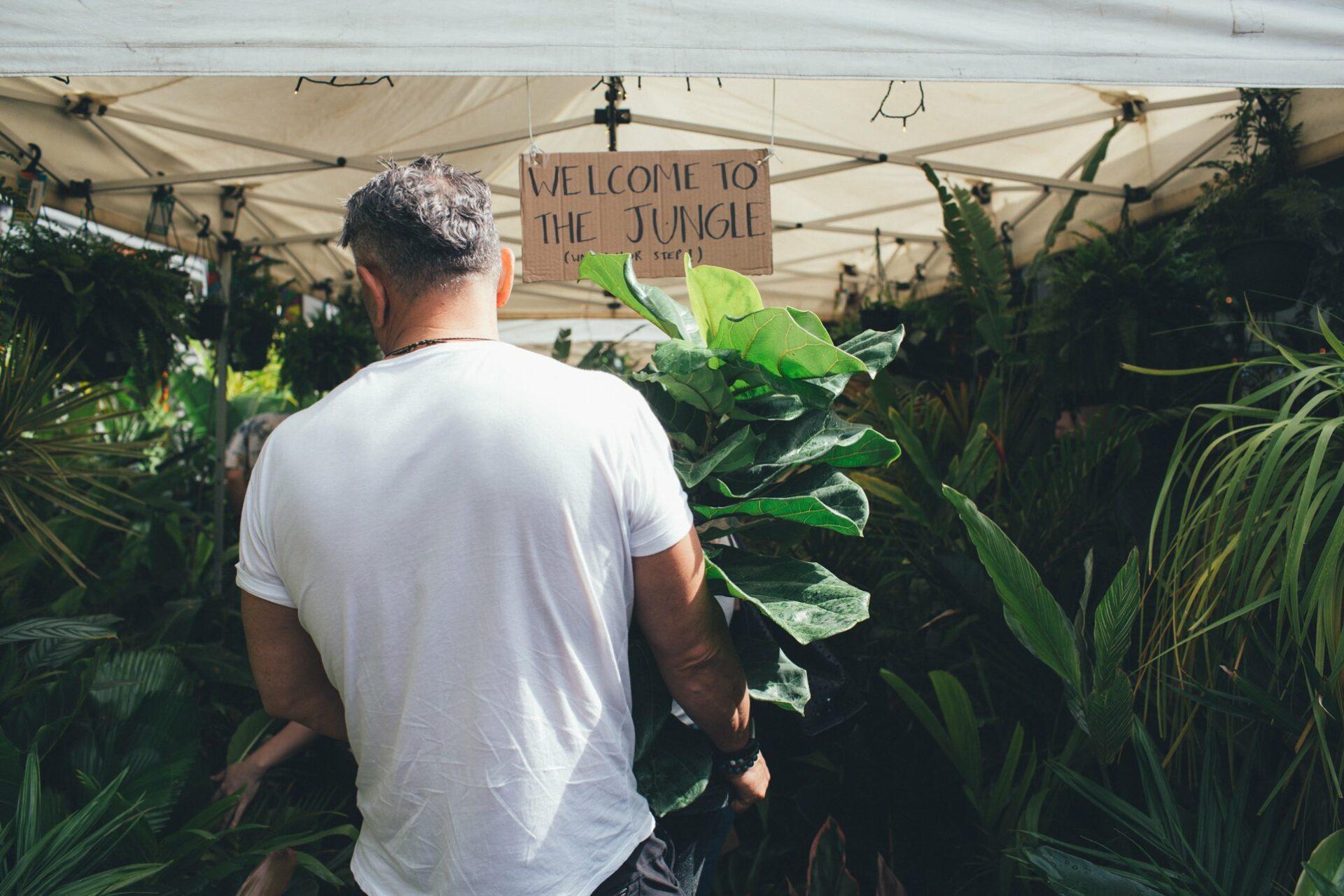 Brisbane the Jungle Collective