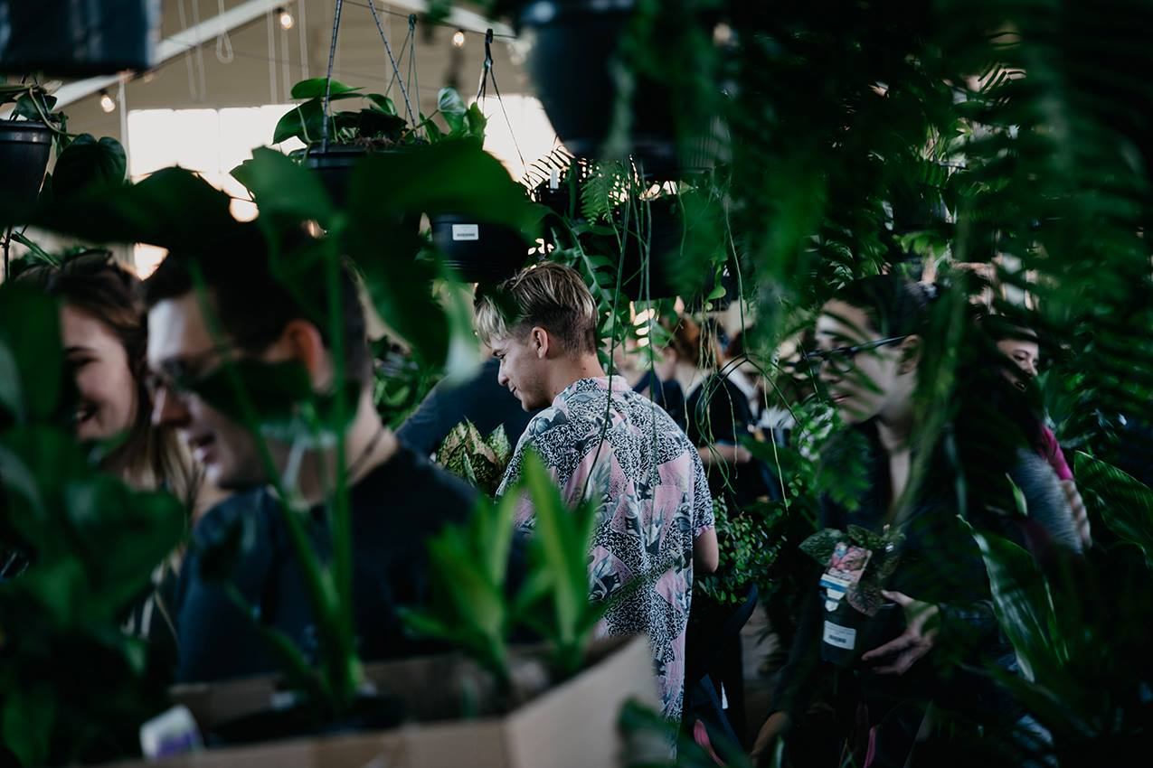 Plant Sale at Canberra
